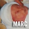 Marc O Curraoin