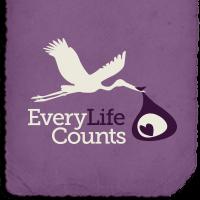 (c) Everylifecounts.ie